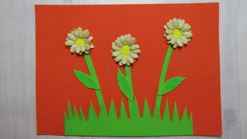Аппликация в школу 3 класс (цветы из семян тыквы) своими руками: простая инструкция с описанием и фото для детей
