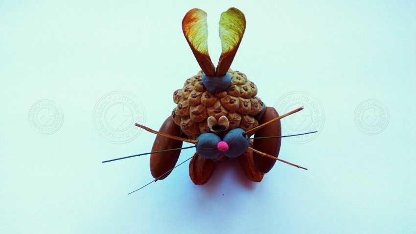 Поделка заяц для детей в школу или садик. Мастер-класс по созданию поделки из природных материалов своими руками (20 фото)