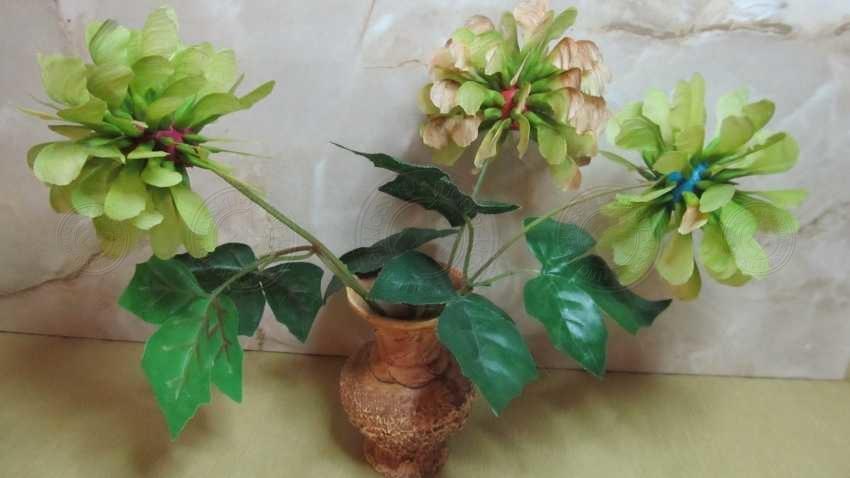 Как сделать цветы из кленовых листьев: практичный мастер-класс с фото и описанием