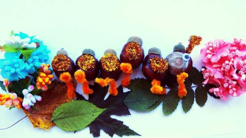 Поделка гусеница из каштанов — пошаговая инструкция для детей. Мастер-класс по созданию поделок в школу или садик