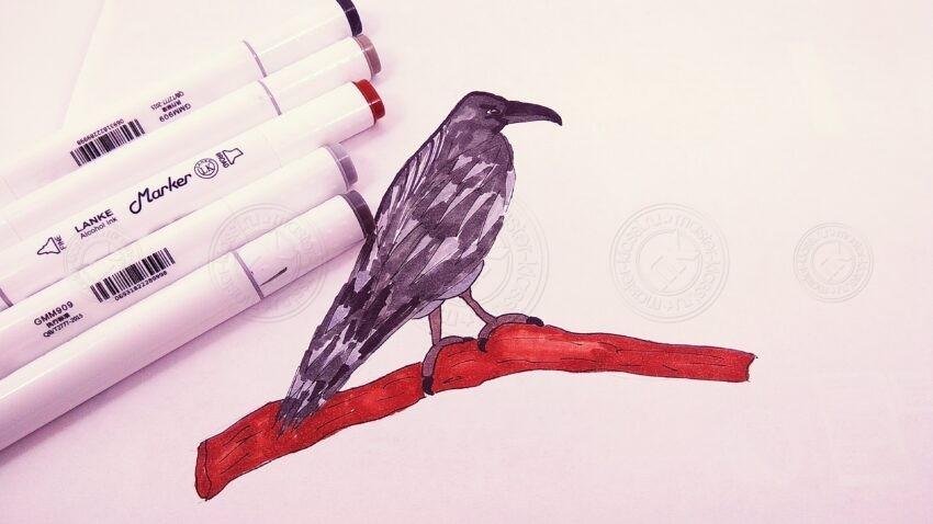 Как нарисовать ворону своими руками: легкий мастер-класс по рисованию для детей