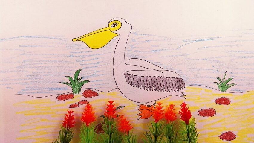 Как нарисовать пеликана своими руками поэтапно — легкая инструкция шаг за шагом, для детей любого возраста