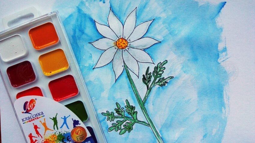 Как нарисовать цветы ромашки акварелью: пошаговая инструкция для начинающих с фото и описанием